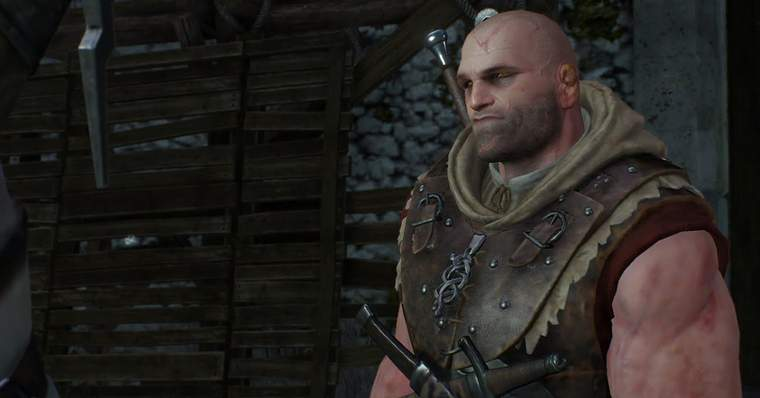 Witcher 2 Netflix Series: Find ALL About the Wild Hunt - School of the Viper