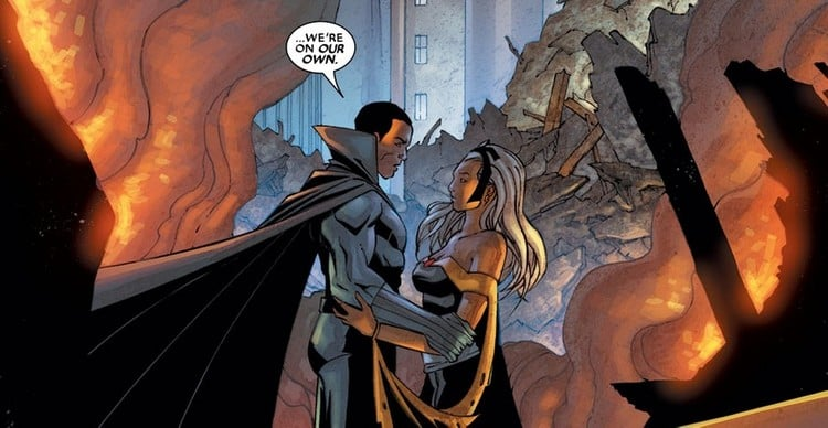 Black Panther and Storm join forces in the Civil War